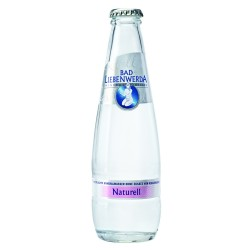 Sternburg Radler 0,5 l